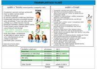 transplantacevlass.jpg