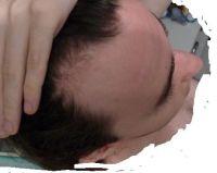 cerven 2008